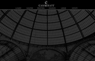 CARMINATI LUXURY: Sito Corporate